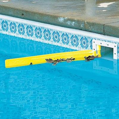 Skim-it (Above Ground Pool Skimmer Extension)