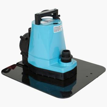 Little Giant  Automatic Cover Pump