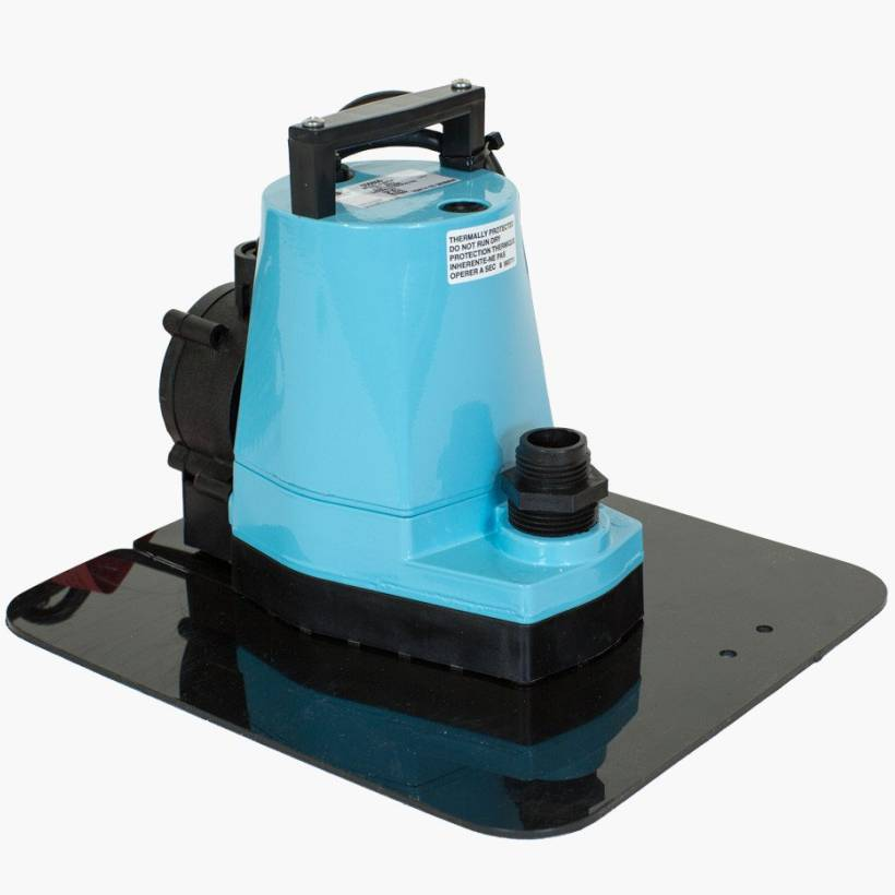 Little Giant Pool Pumps